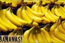 我々が食べるバナナは全て同じ遺伝子を持っている 意外と知らないバナナの歴史