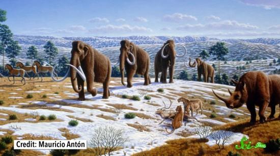恐竜の絶滅後、なにが起こった? 地球の生態系の歴史を振り返る ...