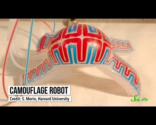 アメンボのように跳び、タコのように色を変える–生物を模倣して作られたロボットたち