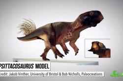 ついに判明 恐竜の肌は〇〇柄