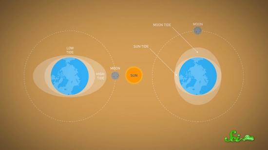 1日は少しずつ長くなっている–地球の変化と公転速度を解説