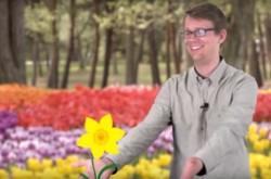 植物は花を咲かせる時期をどうやって知るのか?