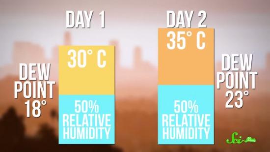 湿度が高いと暑く感じるのはなぜか?