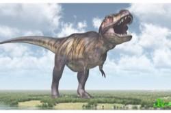 恐竜のおもちゃは本物の恐竜から作られている?