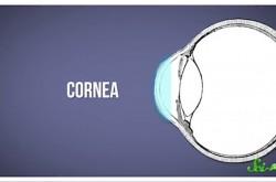 コンタクトレンズを使い続けると目にどんな影響がある?