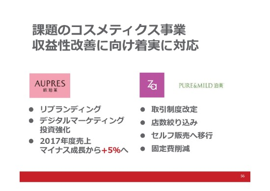 shiseido (56)