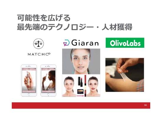 shiseido (66)