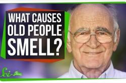 なぜ、お年寄りからは独特の匂いがするのか?