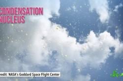 雲に含まれるバクテリアが世界中におよぼしている影響