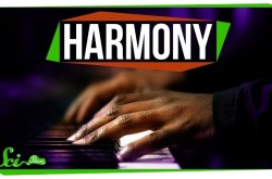 音楽の「ハーモニー」をヒトが心地よく感じる理由