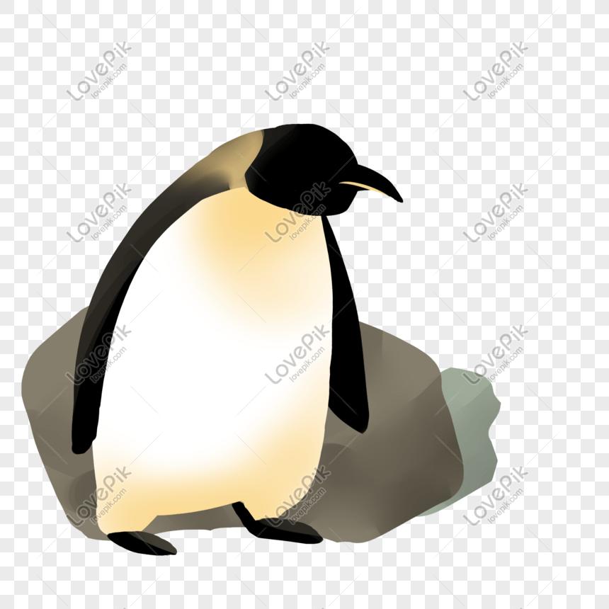 大海可愛南極企鵝PSD圖案素材免費下載 - 尺寸2000 × 2000px - 圖形ID401249190 - Lovepik