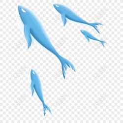 Free Fresh Blue Whale Transparent Material PNG & PSD image download size 1024 × 1024 px ID 833552079 Lovepik