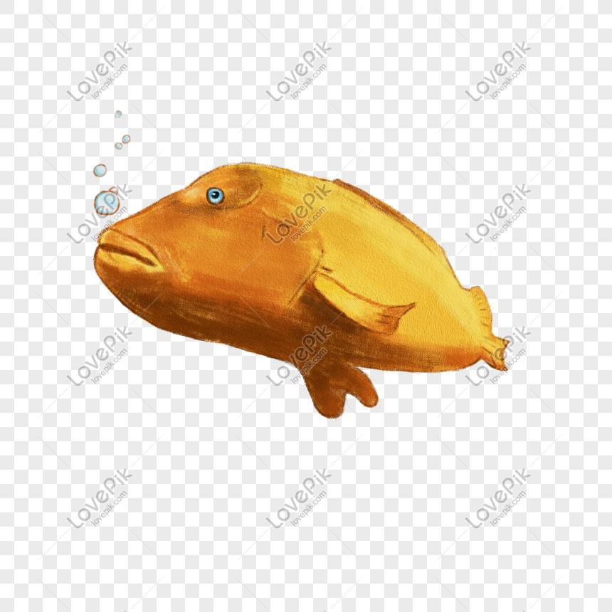手繪吹泡泡的金色魚PSD圖案素材免費下載 - 尺寸2000 × 2000px - 圖形ID649833844 - Lovepik