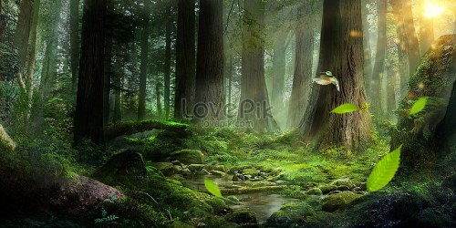 Creative forest background creative image picture free download 400346509 lovepik com