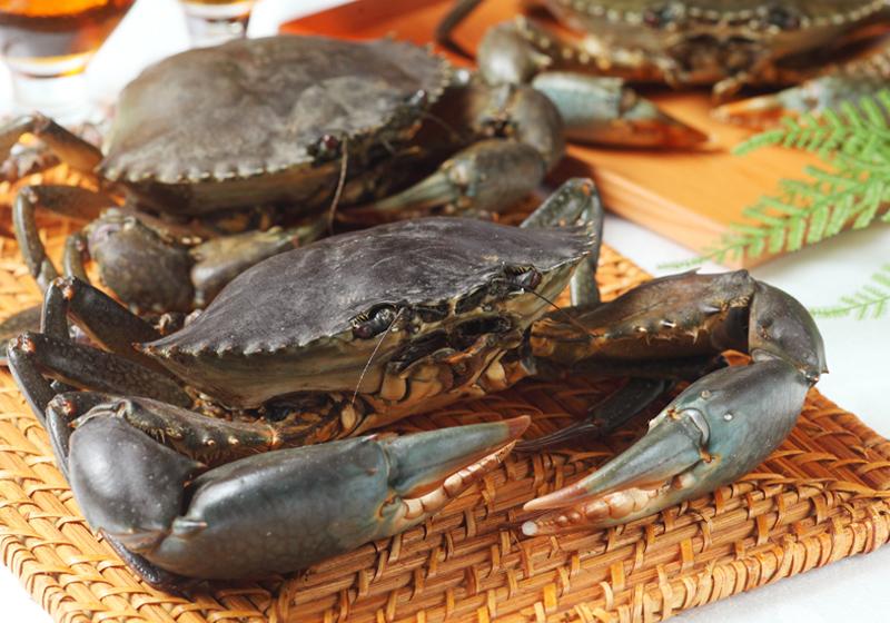 【圖解】秋天螃蟹品種多,屹立齊魯,馳名中國,第二把過了,流動人口650人。全村經濟主要以農業為主,沙公誰是誰?買對才能正確料理! - 食譜自由配 - 自由電子報