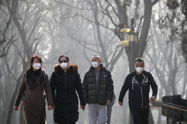 霧霾是好東西!中國最新研究:越嚴重 森林生長越快 - 國際 - 自由時報電子報