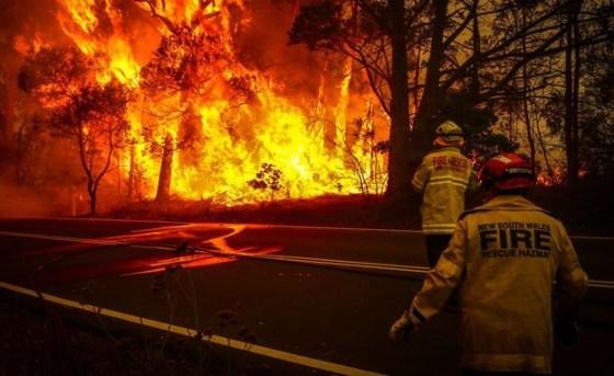 Australia fires (Photo: skynews)
