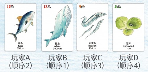 Amazing Ocean Food Chain 海洋大驚奇 食物鏈(3) - 宇教泥樂Img