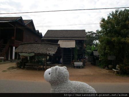 柬埔寨景點 吳哥窟洞里薩湖水上人家的小羊兒