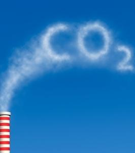 Le CO2 relâché dans l'atmopshère a fait augmenter la couverture végétale dans plusieurs déserts