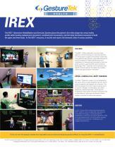Sistema de rehabilitación virtual con juegos serios - IREX® - GestureTek Health