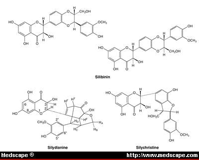 Pharmacology of Silymarin