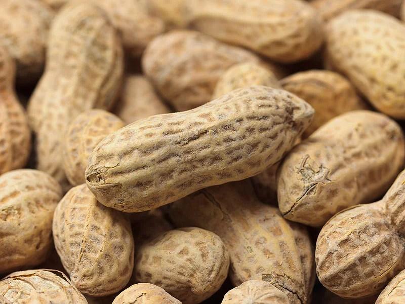 Image result for infant peanut