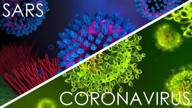 Echoes of SARS Mark 2019 Novel Coronavirus Outbreak