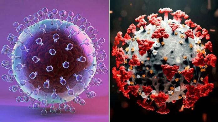 Hepatitis C Antivirals May Fight SARS-CoV-2