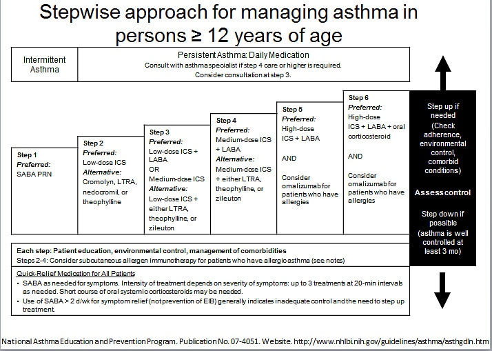 Image result for treatment for achieving control asthma