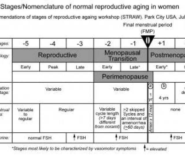Stages Nomenclature Of Normal Reproductive Aging I