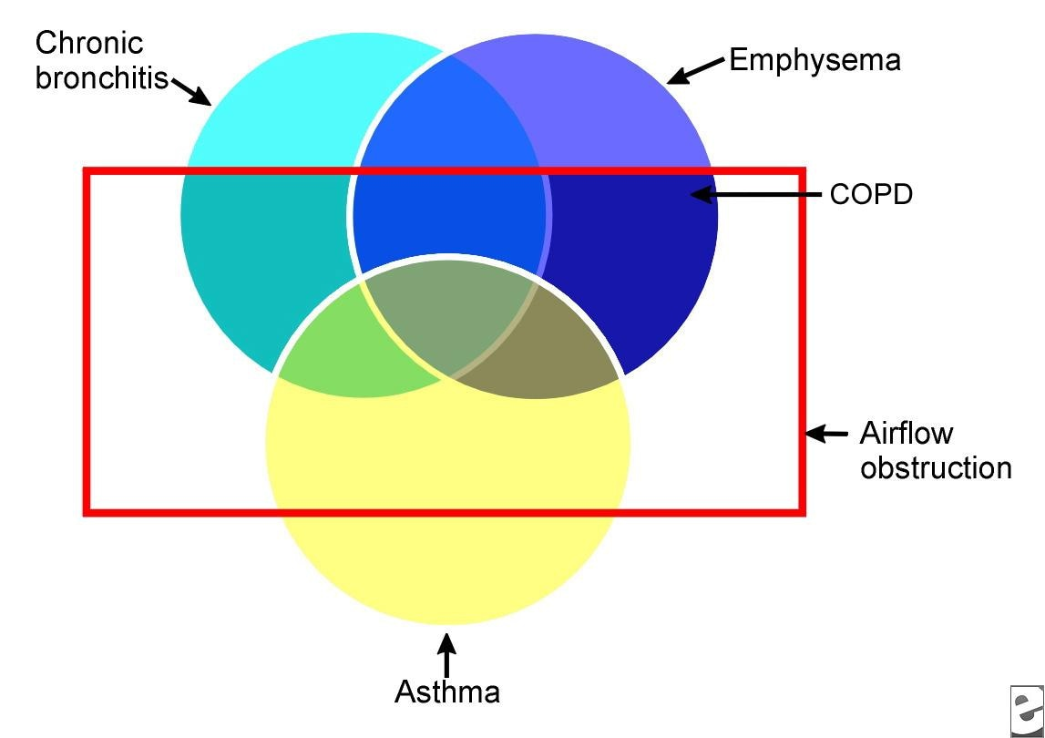 compare and contrast mass weight venn diagram code alarm ca5051 wiring chronic obstructive pulmonary disease copd practice essentials background pathophysiology