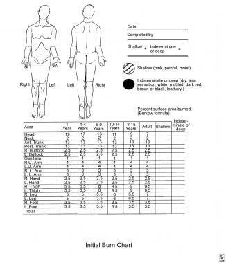 Arm Diagram Skin Assessment Form. anacapa technologies