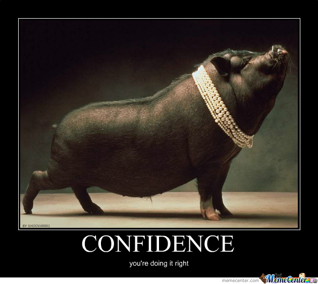 Pig Displaying Confidence.