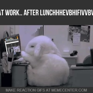 Me At Work After Lunch By Maucor2 Meme Center