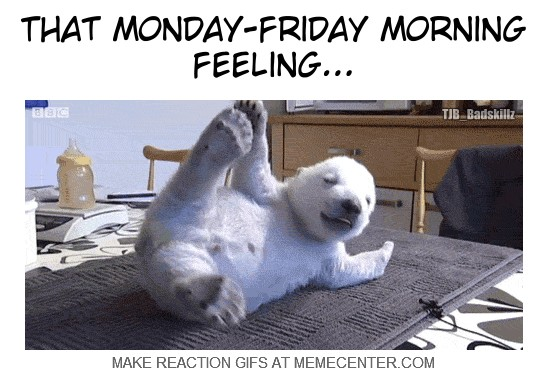 Image result for monday morning feeling images