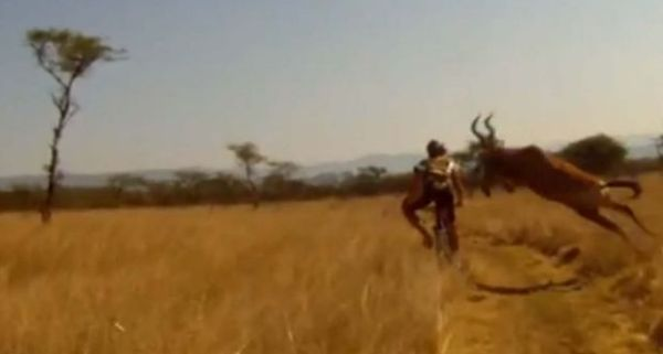 biker v buck youtube video