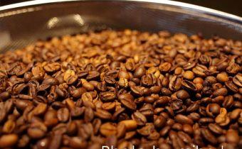 台北》教你簡單沖出健康好咖啡:大隱珈琲【黑。進化】咖啡分享會(開獎)