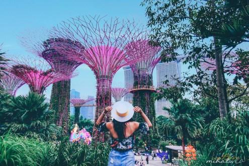 新加坡》濱海灣花園超級樹燈光秀最佳拍攝點&世界最高室內雨林雲霧林花穹冷室