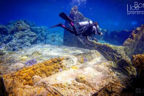 台灣潛水推薦清單!6大台灣知名潛水地點經驗分享 在台灣潛水完全不輸國外