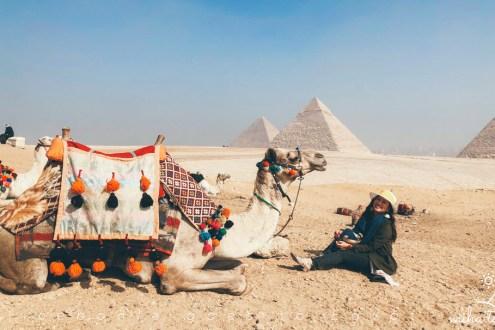 埃及旅遊攻略》埃及跟團才好玩!常旅遊12天超深度之旅 埃及簽證航班吃喝玩樂行前必看