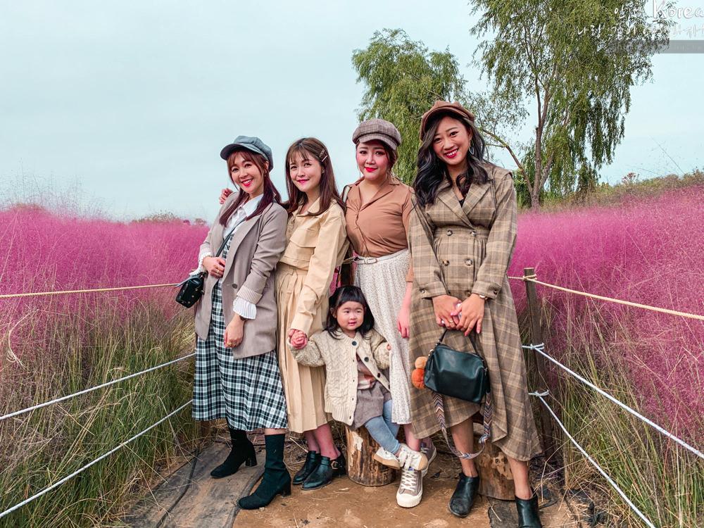 天空公園,首爾自由行,粉紅波波草,粉紅掃帚草,粉紅芒草,首爾景點,首爾好玩