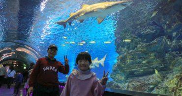 【首爾】COEX AQUARIUM 水族館:交通&便宜門票建議,超棒親子景點&雨天備案