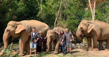 【泰國清邁】大象體驗營:陪大象玩泥巴&洗澡,近距離接觸超療癒,清邁熱門玩法!