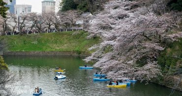 【東京賞櫻景點】千鳥之淵賞夜櫻,可以划船看櫻花的浪漫賞櫻名所