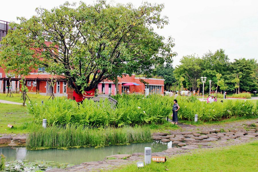 台北中正景點   客家文化主題公園 免費參觀 農村體驗 親子同遊