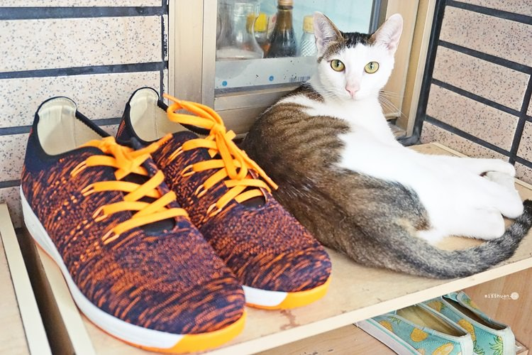 DK呼吸空氣鞋 一雙會呼吸的鞋 悶熱夏天也依然好透氣 DK也有休閒款 鞋款選擇多 品質更是讚 穿一次就上癮 檔期促銷要買要快喔 ♥♥♥