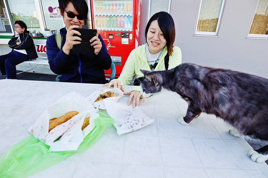 日本沖繩美食 テルちゃん 奧武島好便宜天婦羅 均一價60円 連貓咪島的貓咪都愛吃