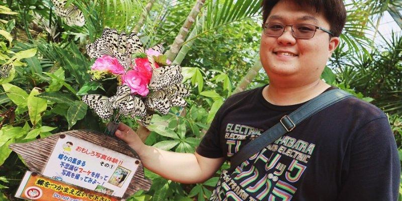 沖繩本部町景點 琉宮城 蝶々園 零距離與數量爆多的蝴蝶在花園共舞 美麗海水族館旁 密集恐懼症的朋友請注意 xDDD