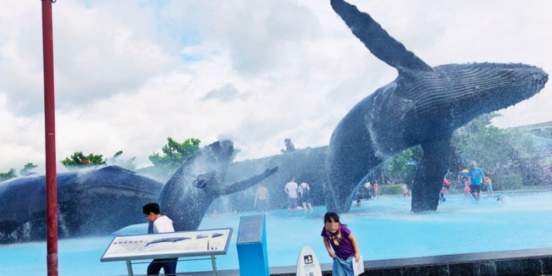 屏東車城景點 國立海洋生物博物館 餵食秀 戲水池 親子同遊 老少咸宜